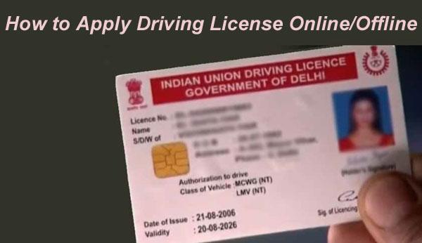 Punjab Driving License